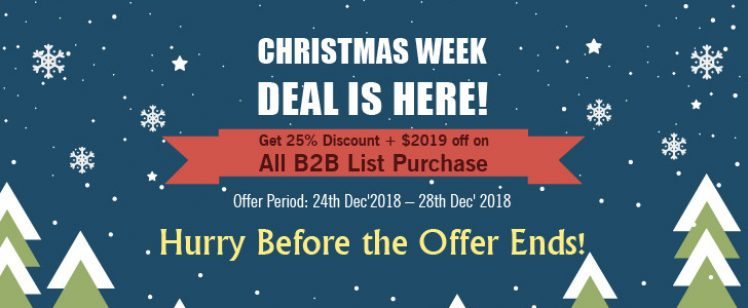 Christmas Treat: Thomson Data Announces 25% Discount Plus $2019 off on B2B Lists