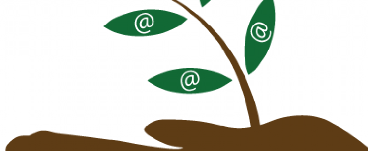 Grow Your B2B Email List